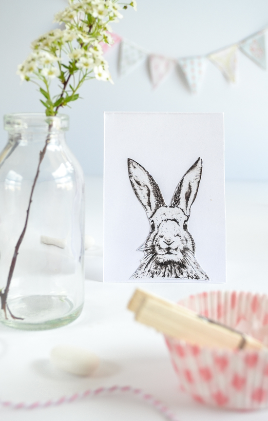 bunny-passionshake-25281-of-1-2529