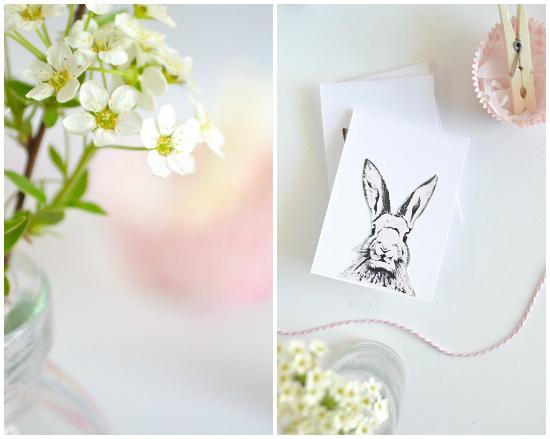 bunny-passionshake1-25281-of-1-2529