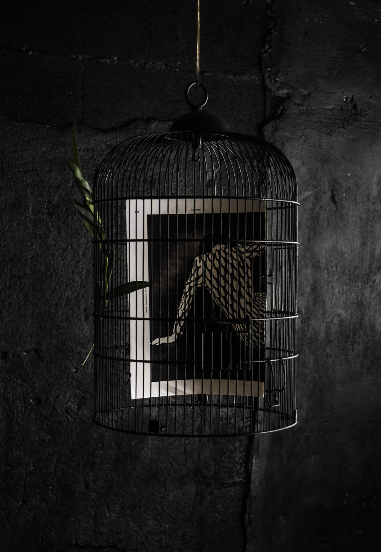 halloween-cage-print