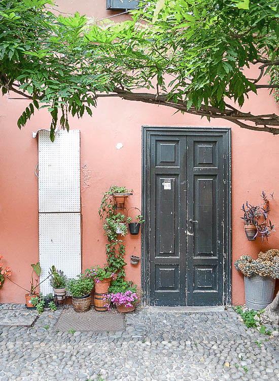 Door - Passion shake blog
