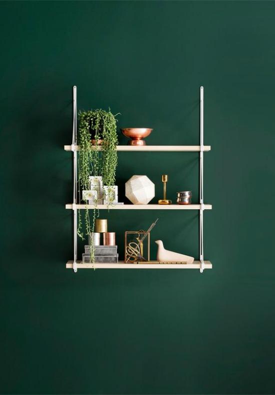 forrest green shelf