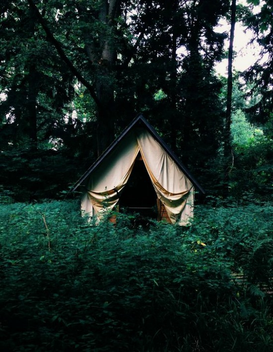 forrest green tent