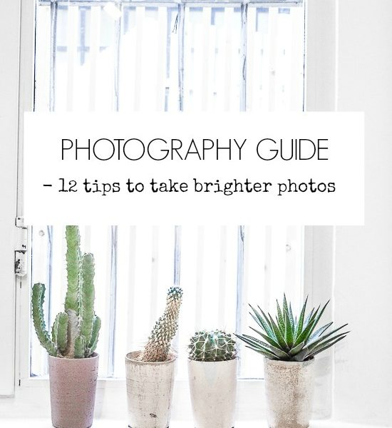 Photography Guide – 12 Tips To Take Brighter Photos