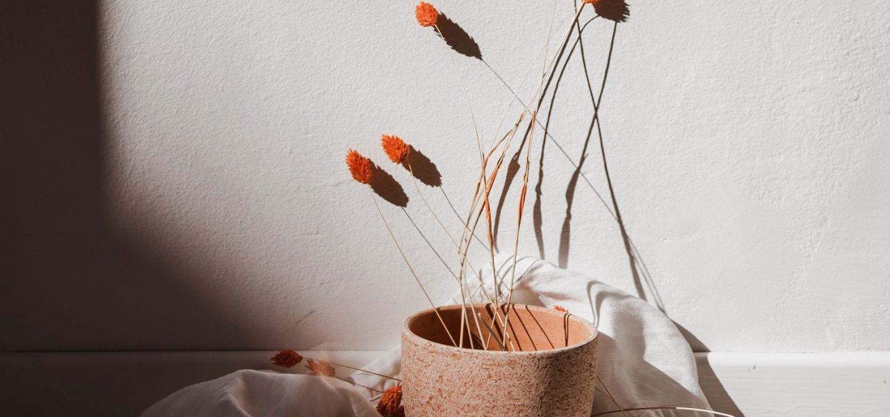 Summer styling with terracotta vase and dried flowers
