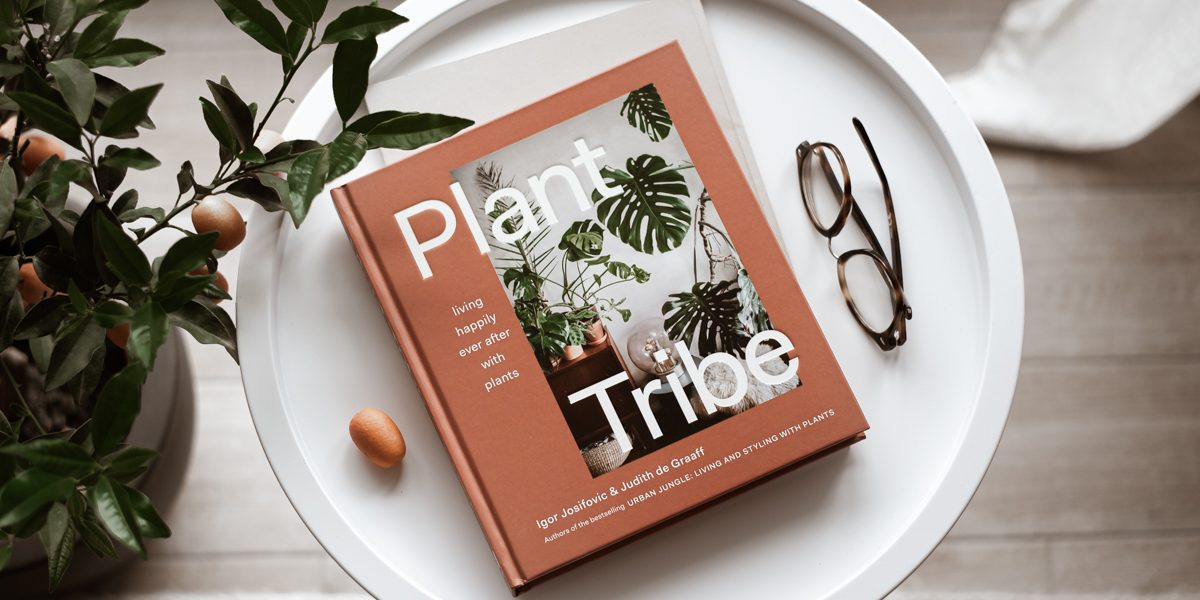 PLANT TRIBE – happily ever after with plants